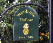 Brookville Hollow (Stockton NJ)