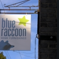 RSW_DimensionalLetters_17_BlueRaccoonA